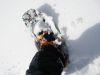 Snowshoe_1